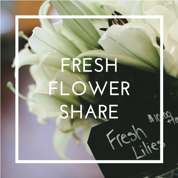 fresh-flower-share